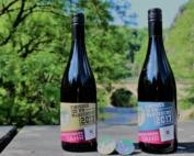 RHEIN-AHR-MARSCH - Wein für die Finisher
