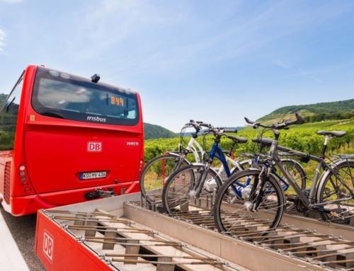 Der RegioRadler zwischen Rheinbach und dem Ahrtal eröffnet beste Wandermöglichkeiten